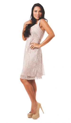 Peche Argent Lace Dress (Stokes Thompson)